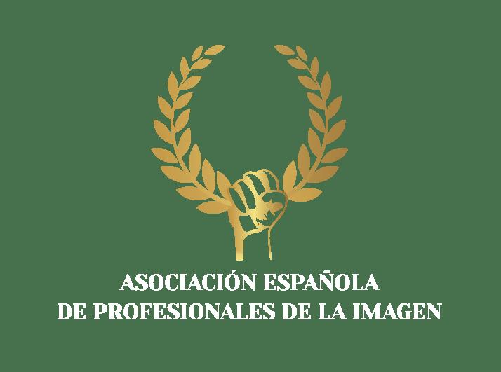 logo_aepi