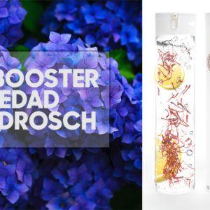 Damos la bienvenida a Serum Booster, el nuevo producto FRIDDA DORSCH