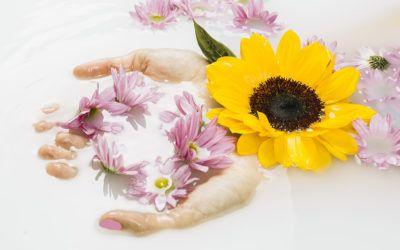 Prebióticos y probióticos en cosmética, ¿cuáles son sus beneficios para la piel?