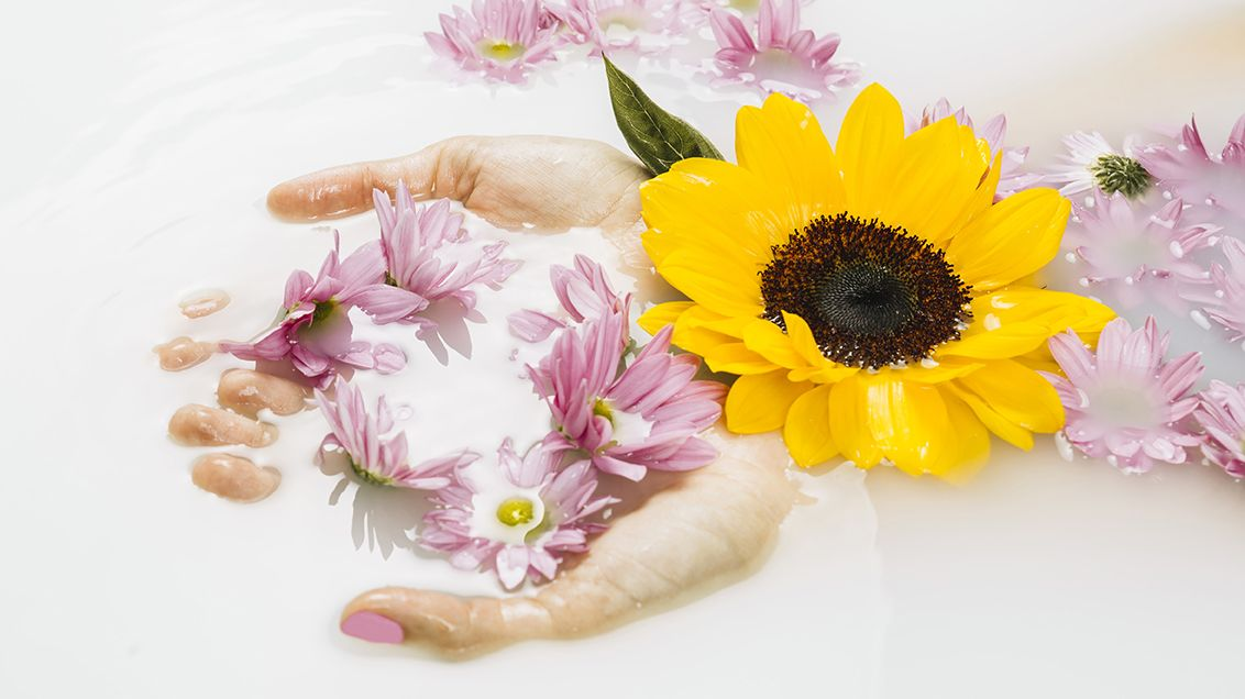 Fridda Dorsch | Prebióticos y probióticos en cosmética, ¿cuáles son sus beneficios para la piel?